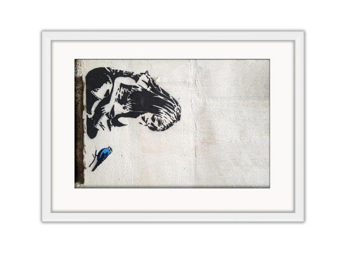 Blue Bird  Photo Print