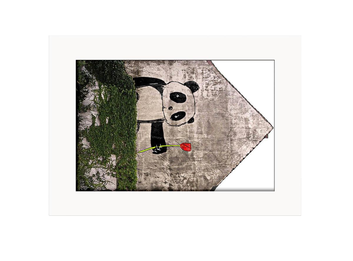Panda with Rose  Photo Print