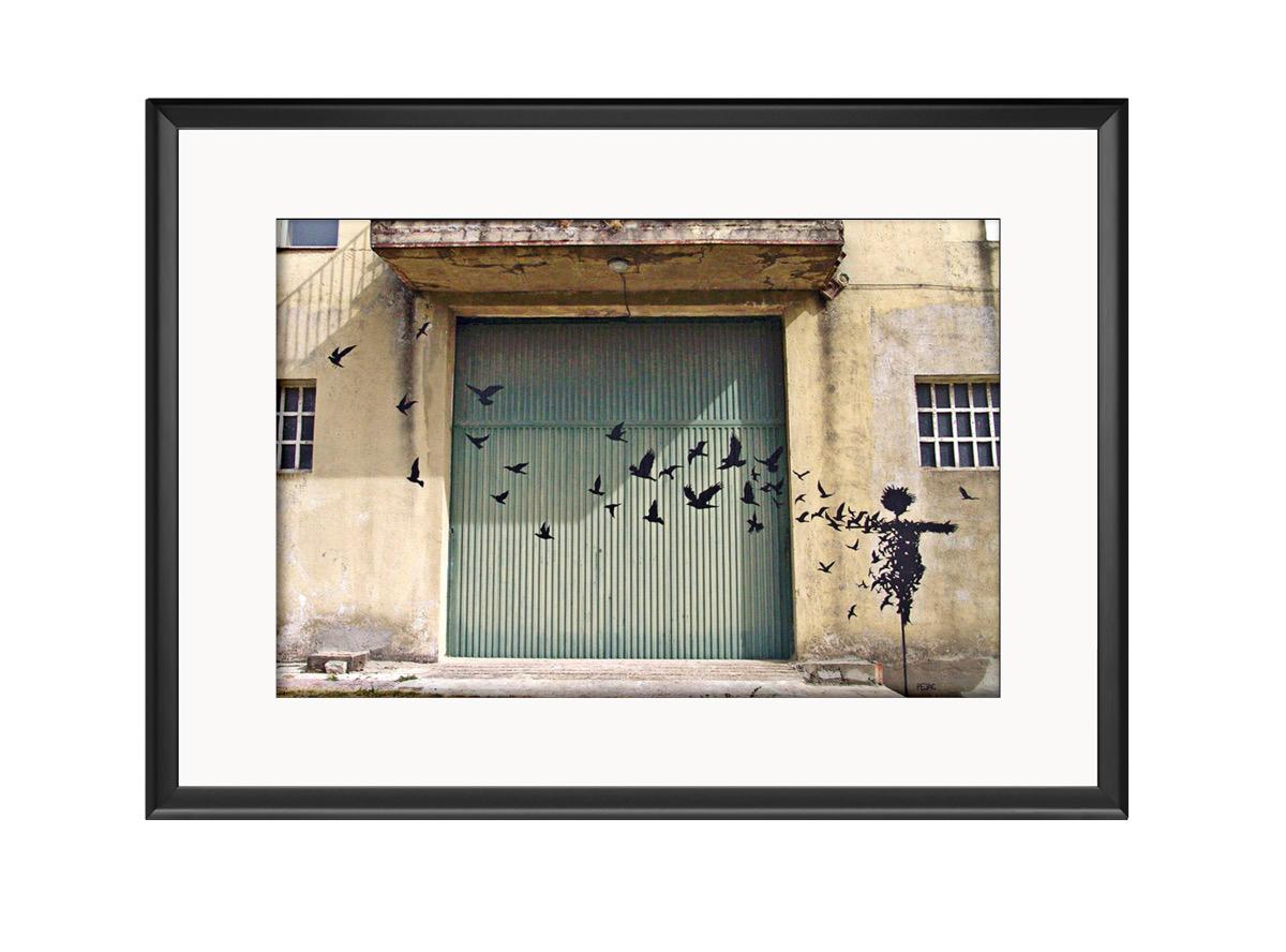 Scare Crow  Photo Print